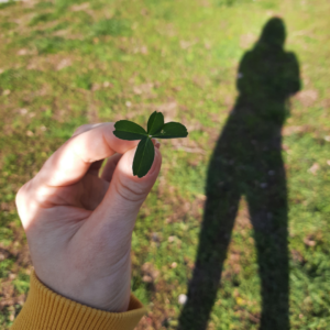 mentorka blogování